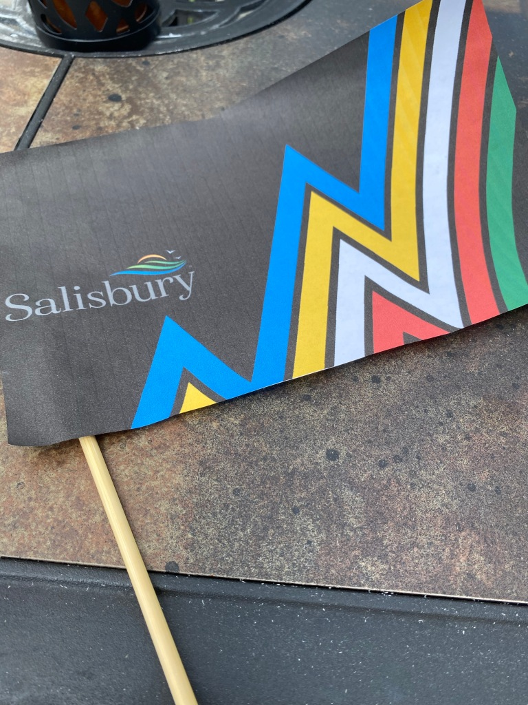 This is a photo the SBY Disability Pride flag; the flag is described above. It's a close up photo, the wooden knitting needle is shown. It's resting on a table