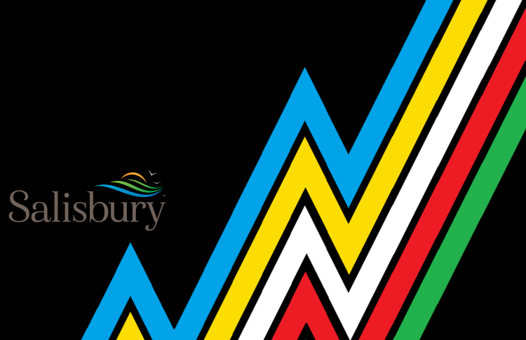 "The logo is to the right. The text reads Salisbury and there's lines. Description of the flag: A black flag crossed diagonally from top left to bottom right by a ""lightning bolt"" band divided into parallel stripes of five colors: light blue, yellow, white, red, and green. There are narrow bands of black between the colors."